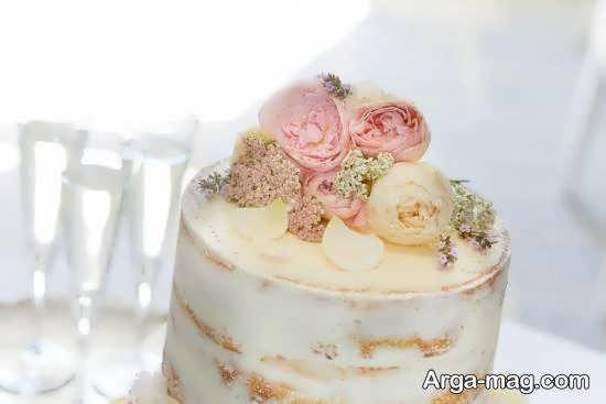 زیباسازی کیک