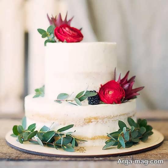آراستن کیک به روشی حذاب