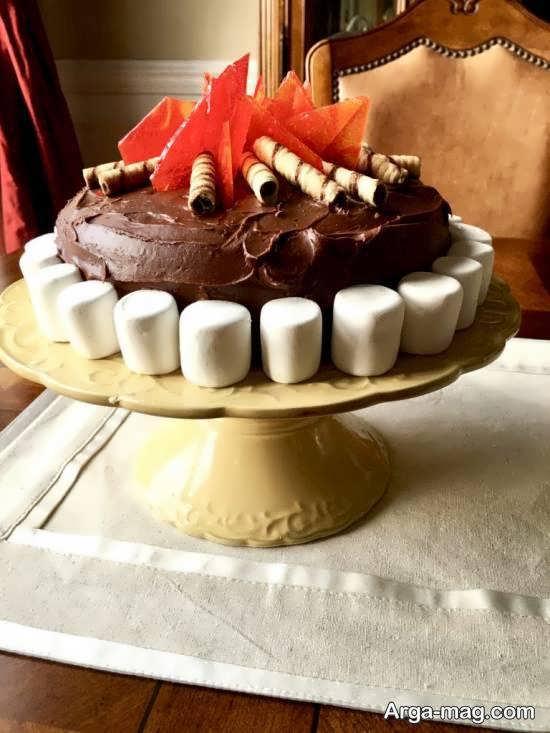مدل کیک متفاوت